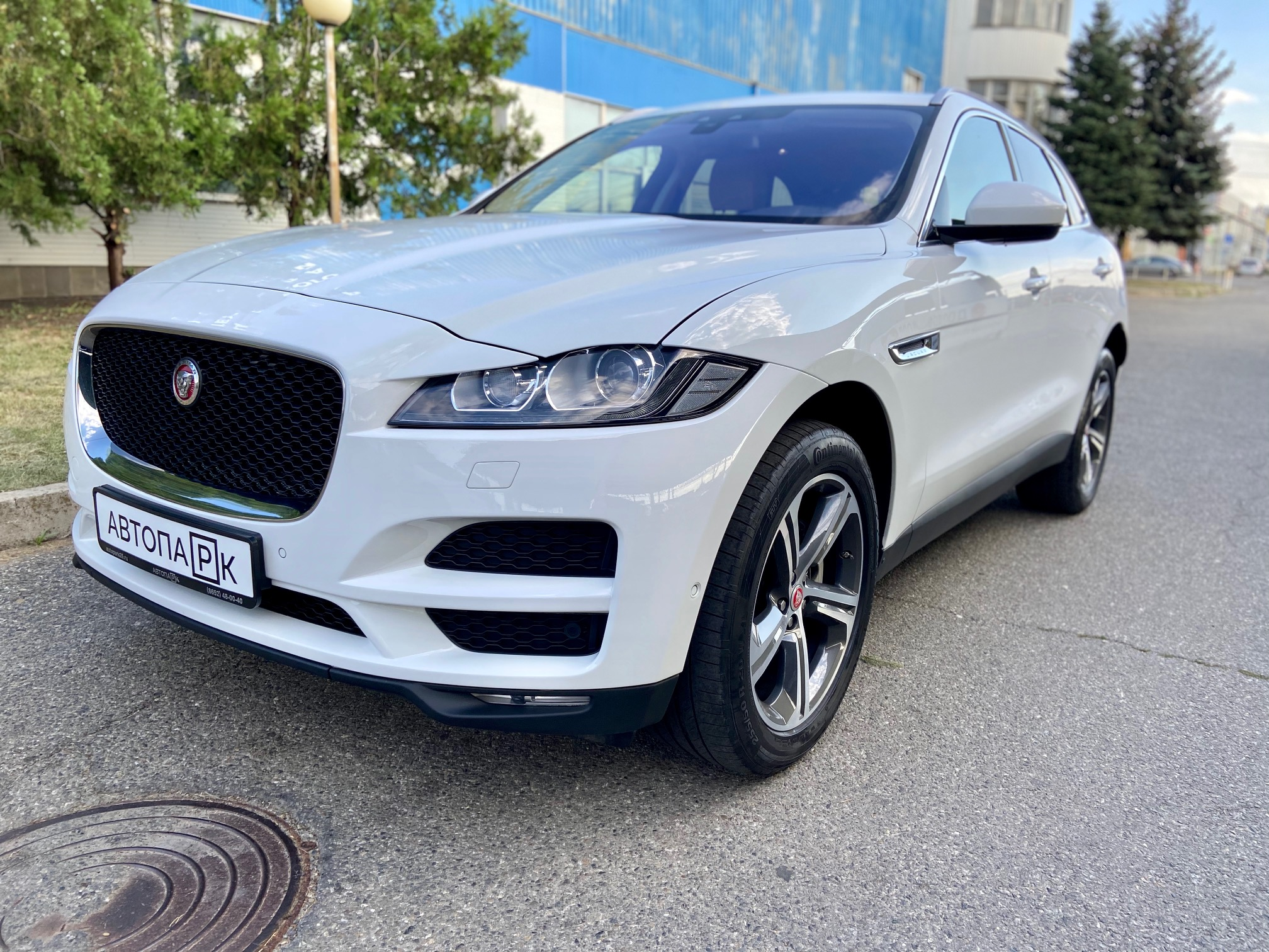Купить Jaguar F-Pace (Белый) - Автопарк Ставрополь